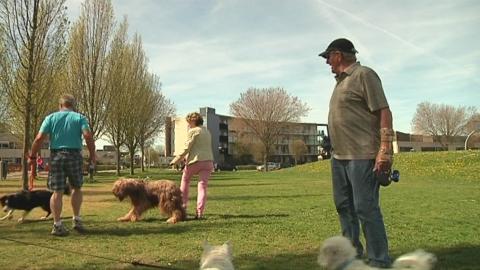 Geen hekwerk voor hondenuitrenveld in Boekentuin