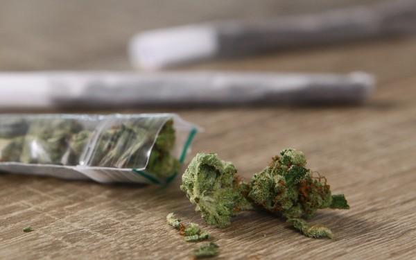 Woerden: Cannabis populair bij jeugdige gebruikers