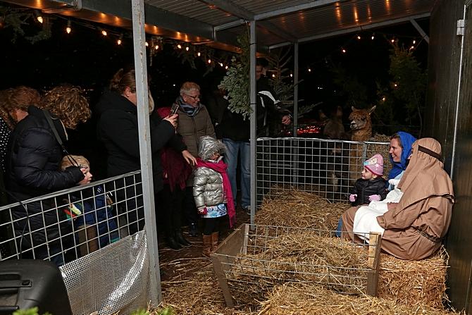 Levende Kerststal afgelast wegens vogelgriep