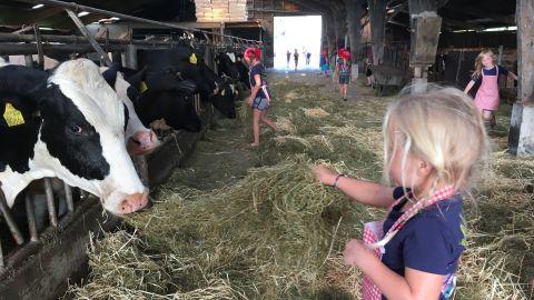 Kindertraditie op Linschotense boerderij stopt