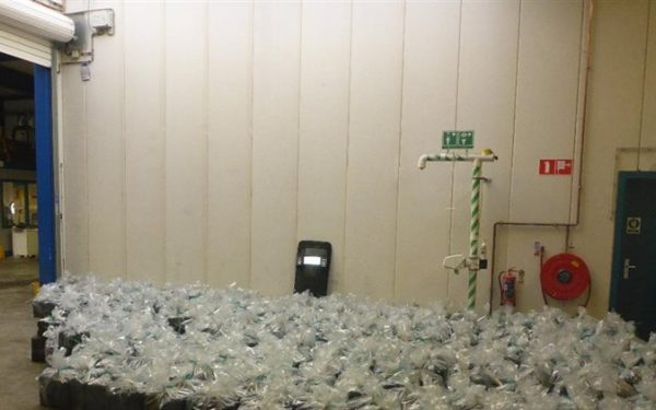 2500 kilo hennep tussen je houtskool