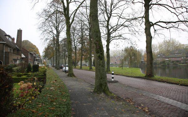 Bomen van Kempensingel toch weg
