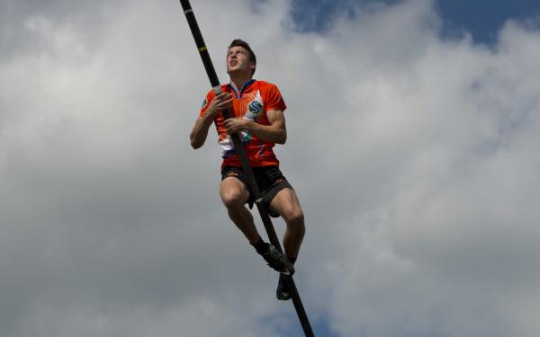 Timmerarends beste springer in Friesland