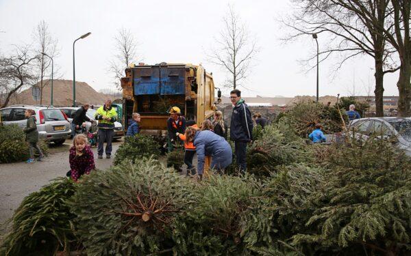 Kinderen leveren kerstbomen in