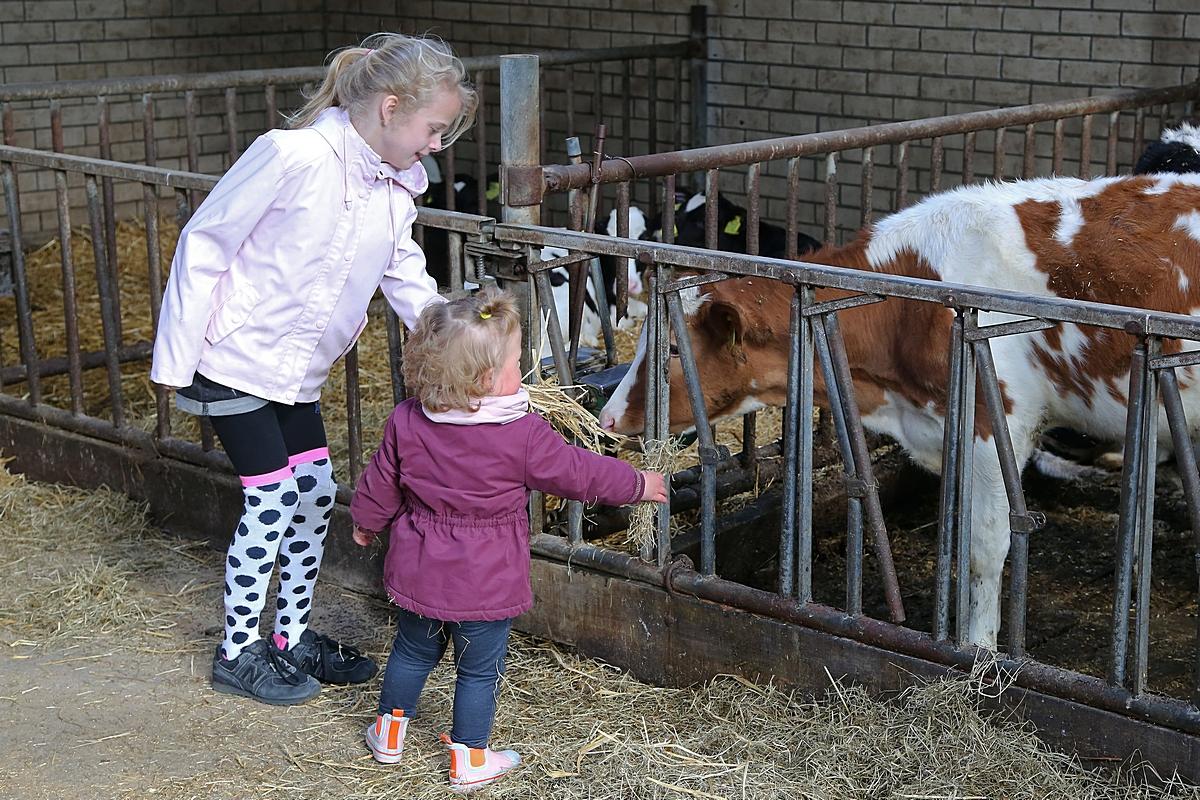 Kennismaken met het echte boerenleven