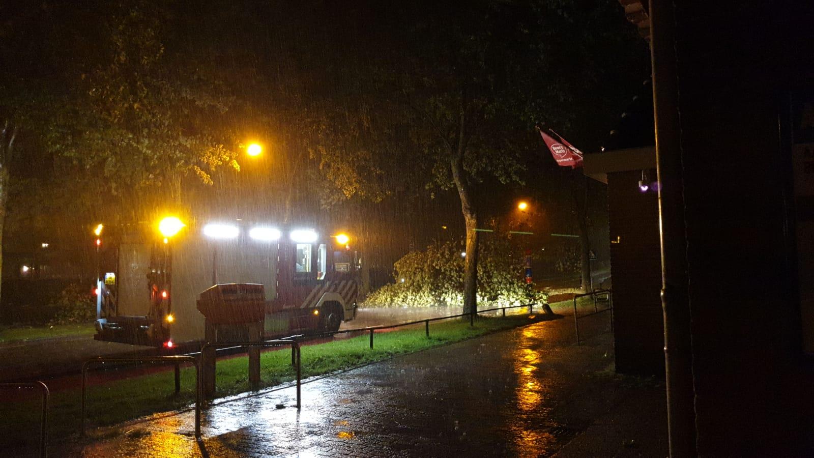 Omgevallen bomen en afgewaaide takken door noodweer