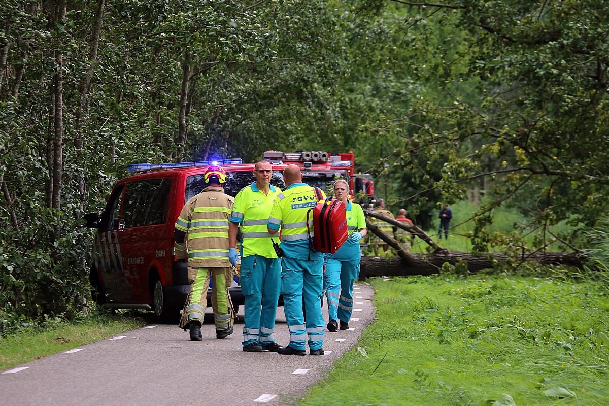 Man overleden door omgevallen boom